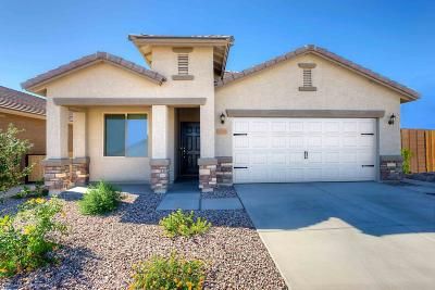 Marana Single Family Home For Sale: 12852 N White Fence Way