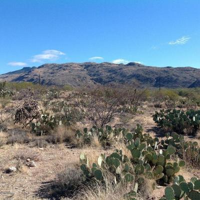 Residential Lots & Land For Sale: 4245 S Saguaro Monument Place #14