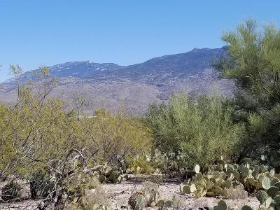Tucson Residential Lots & Land For Sale: E Saint James