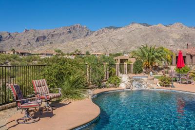 Tucson Single Family Home For Sale: 6143 N Pinnacle Ridge Drive