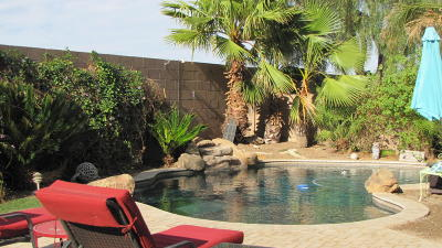 Marana Single Family Home For Sale: 11195 W Flycatcher Drive