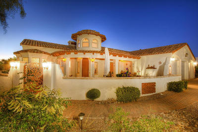 Oro Valley Single Family Home For Sale: 11141 N Pusch Ridge Vistas Drive