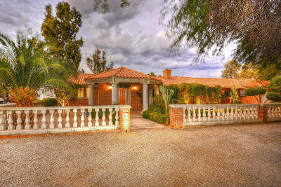 Tucson Single Family Home For Sale: 45 E Calle Clara Vista