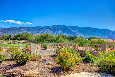 Single Family Home For Sale: 39081 S Clubhouse Drive