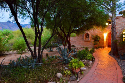 Tucson Single Family Home For Sale: 6240 N Camino Miraval