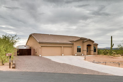 Sahuarita Single Family Home For Sale: 18094 S Golden Valley Drive