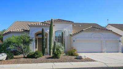Oro Valley Single Family Home For Sale: 262 W Geeseman Springs Drive