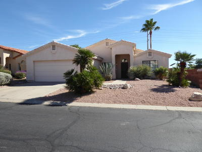 Oro Valley Single Family Home For Sale: 989 W Eagle Look Lane
