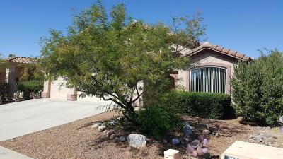 Oro Valley Single Family Home For Sale: 2245 E Rio Vistoso Lane