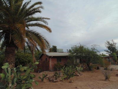 Pima County Single Family Home For Sale: 4115 E Camino De Palmas