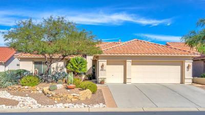 Single Family Home For Sale: 63264 E Harmony Drive