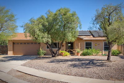 Tucson Single Family Home For Sale: 6260 N Clove Place