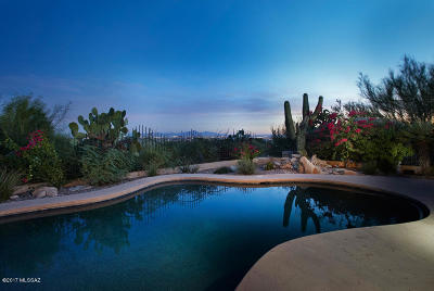 Tucson Single Family Home For Sale: 3273 E Table Mountain Road
