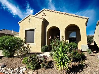 Green Valley Single Family Home For Sale: 5872 S Henderson Canyon Drive