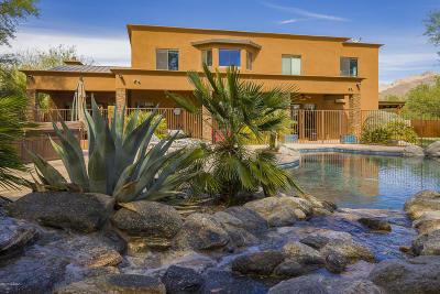 Tucson Single Family Home For Sale: 8532 E Amethyst Lane