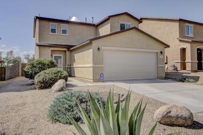Sahuarita Single Family Home For Sale: 1247 W Camino Mesa Sonorense
