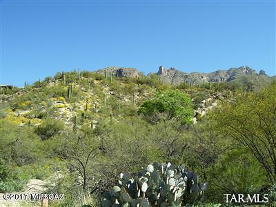 Tucson Residential Lots & Land For Sale: 3569 E Secret Canyon Place #58