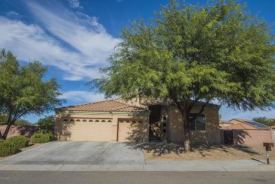 Sahuarita Single Family Home For Sale: 1051 E Mud Spring Canyon Lane