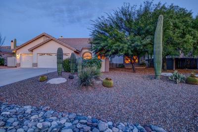 Tucson Single Family Home For Sale: 11230 N Via Rancho Naranjo