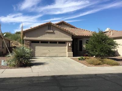 Single Family Home For Sale: 8855 N Treasure Mountain Drive