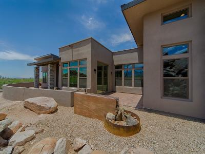 Oro Valley Single Family Home For Sale: 1916 W Tortolita Mountain Circle