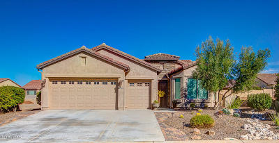 Single Family Home For Sale: 62688 E Border Rock Road