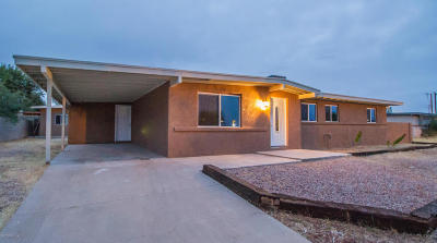 Sahuarita Single Family Home Active Contingent: 17710 S Camino De Las Quintas