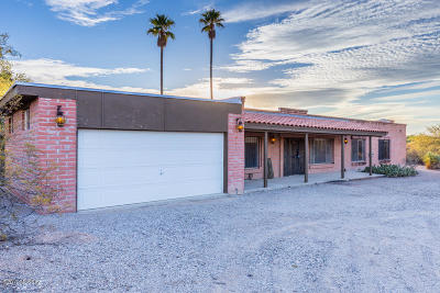 Tucson Single Family Home For Sale: 10050 E Catalina Hwy. Highway