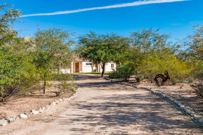 Pima County, Pinal County Single Family Home For Sale: 17891 S Wilmot Road