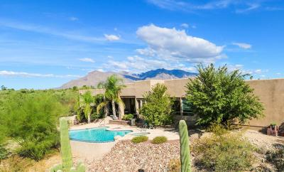 Tucson Single Family Home For Sale: 1920 W Las Lomitas Road