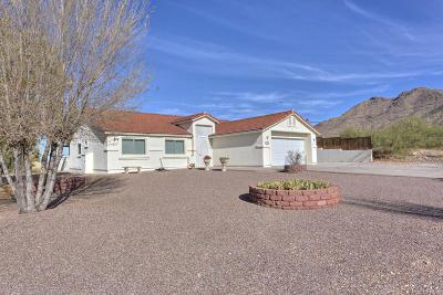 Single Family Home For Sale: 352 Camino Canoa
