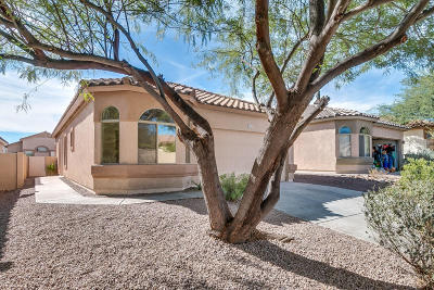 Single Family Home For Sale: 324 E Camino Del Pinsapo