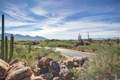 Residential Lots & Land For Sale: 1197 W Tortolita Mountain Circle W #188