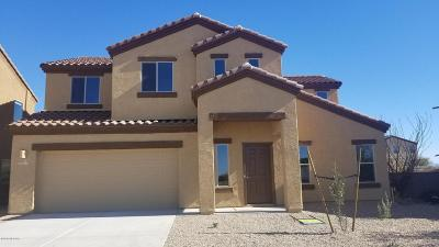 Pima County, Pinal County Single Family Home For Sale: 8061 S Red Sox Road