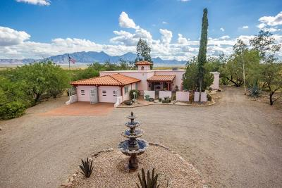 Green Valley  Single Family Home For Sale: 333 W Mission Twin Buttes Road