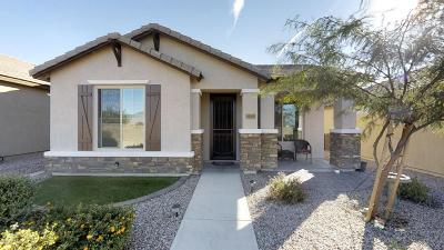 Vail Single Family Home For Sale: 14059 E Troika Street