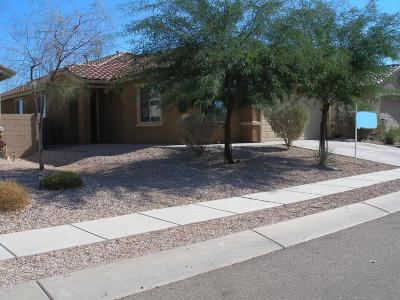 Single Family Home For Sale: 7393 S Mountain Star Drive