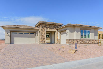 Marana Single Family Home For Sale: 14231 N Hidden Arroyo Ps Pass N