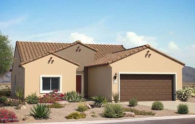 Single Family Home For Sale: 21540 E Freedom Drive