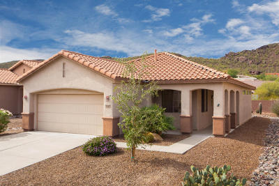 Continental Ranch Sunflower Single Family Home Active Contingent: 9455 N Whispering Shadows Way
