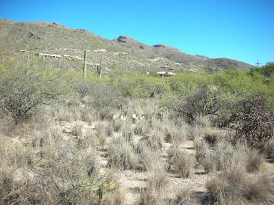 Residential Lots & Land For Sale: 5240 N Mount Lemmon Short Road #5