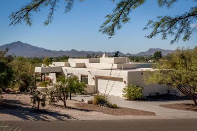 Tucson Single Family Home For Sale: 7937 N Porto Fino Circle