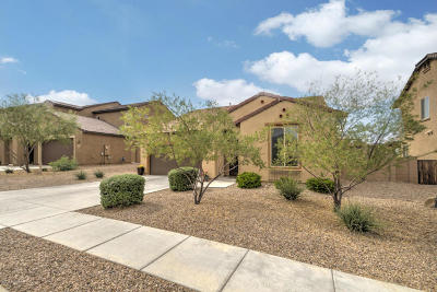 Vail Single Family Home Active Contingent: 670 S Desert Haven Road