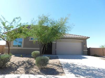 Single Family Home For Sale: 7230 S Mission Springs Drive