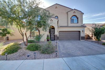 Marana Single Family Home For Sale: 9769 N Hebden Way