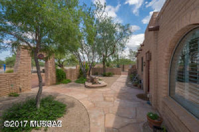 Tucson Single Family Home For Sale: 8790 N Morning View Drive