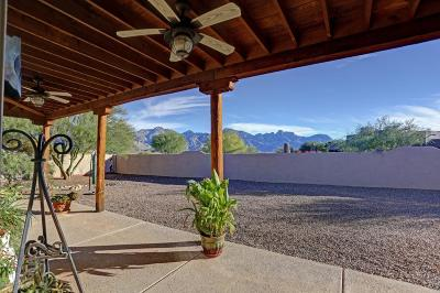 Tucson Single Family Home For Sale: 3170 E Mountainaire Drive