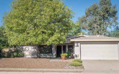 Single Family Home For Sale: 1576 W Highsmith Drive