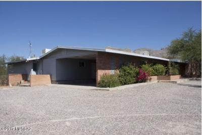 Tucson Single Family Home For Sale: 1221 E Camino De Los Padres