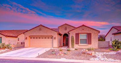 Tucson Single Family Home For Sale: 62764 E Oakwood Drive